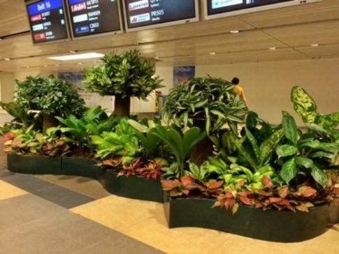 ... With The Best Interior Landscaping That Will Turn Your Once Boring And  Unused Indoor Spaces In Your Yard Into A Recreational Space With Beautiful  Design ...